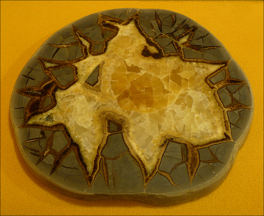 Septarian Nodule Slice by Undistilled