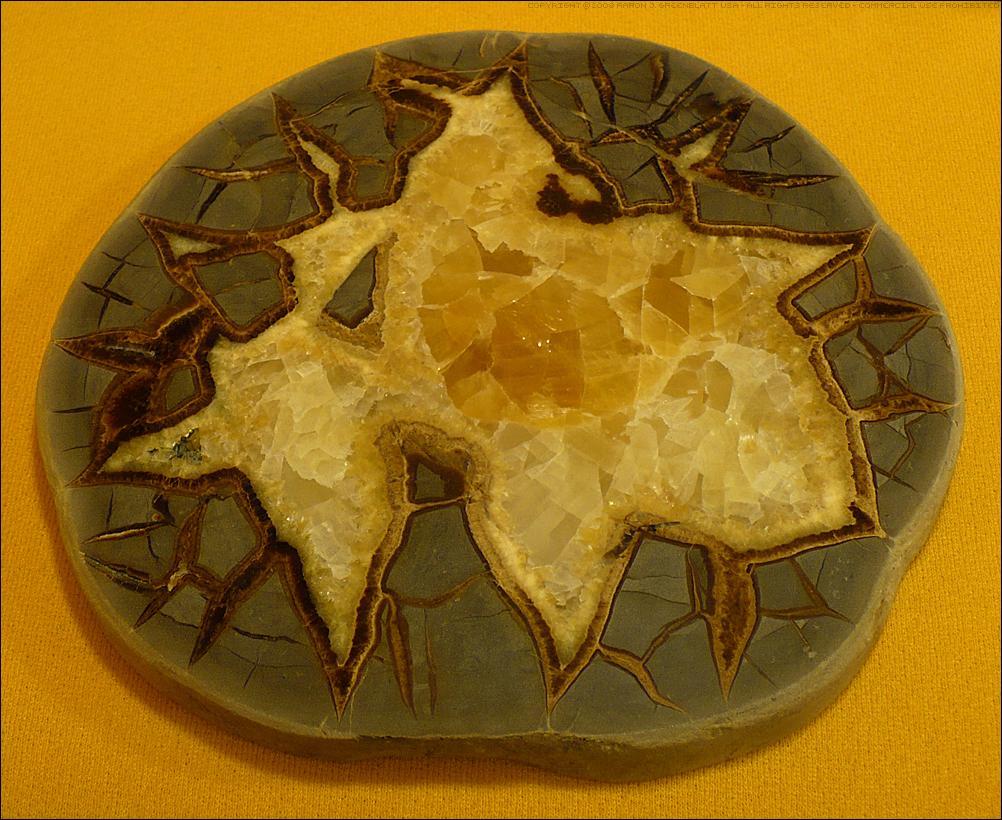 Septarian Nodule Slice by Undistilled