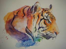 Rainbow Tiger by xXxParabolaxXx