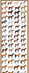 Breed Chart: Horseisle 1-69 by EponaDraws