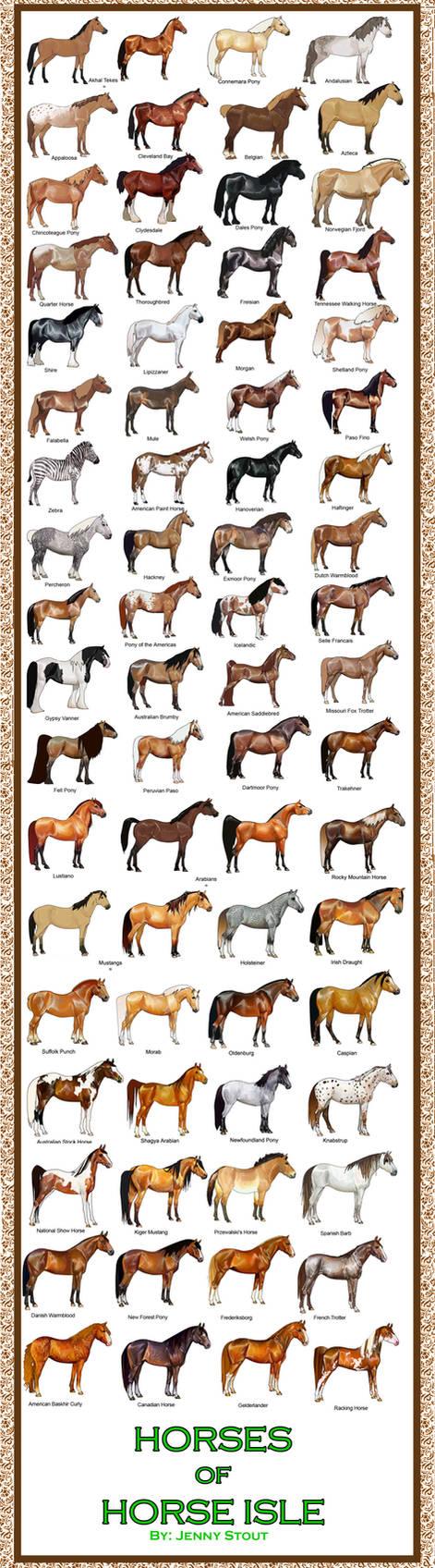 Breed Chart: Horseisle 1-69 by EponaDraws