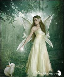 Angel Of Watership