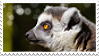 Lemur stamp by Zheffari