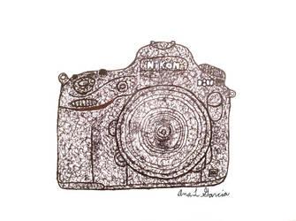 Nikon D800 Scribble