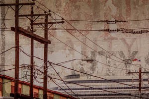 Live Wire by greystarlight