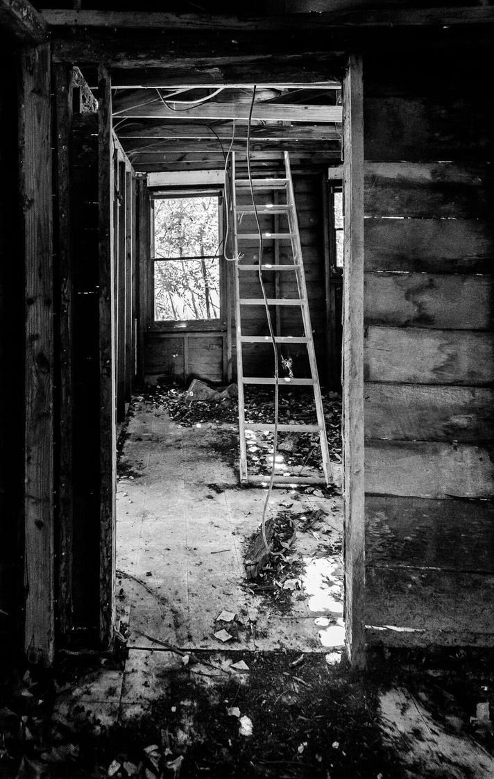 Crawl Space by greystarlight