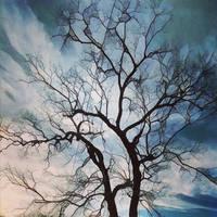 Tree in winter by greystarlight