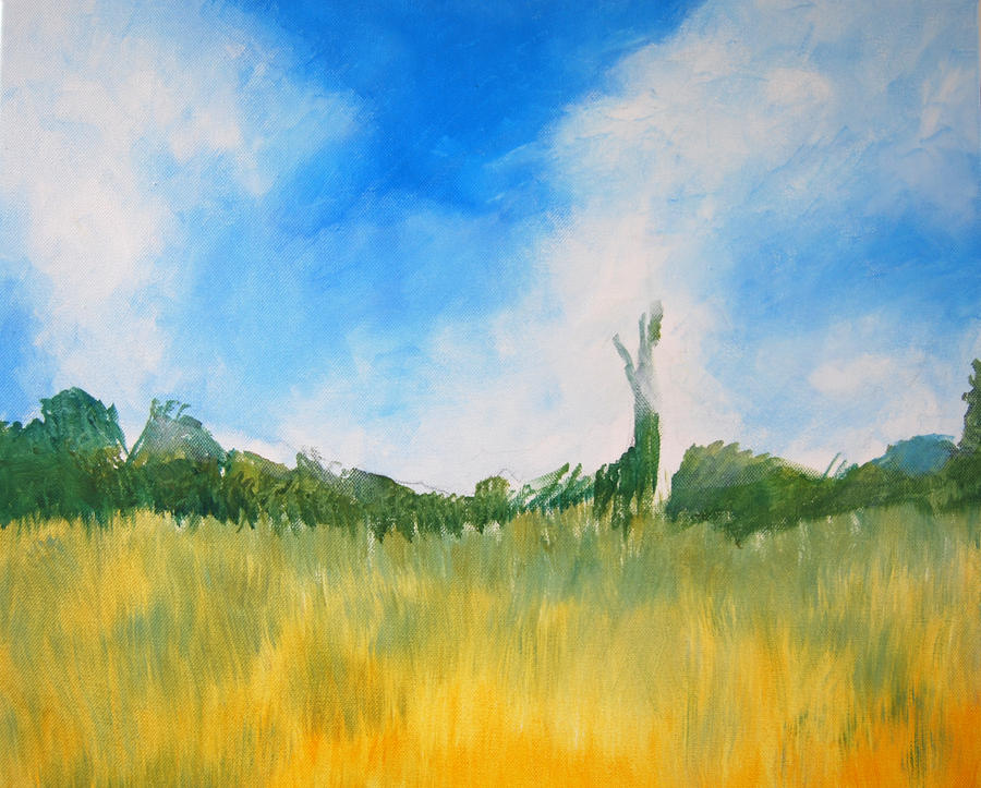 Poppy Field Acrylic 3 by mr-macd