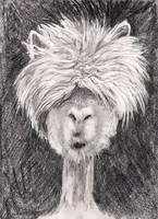 No it is NOT a Llama it is  another Alpaca. by mr-macd