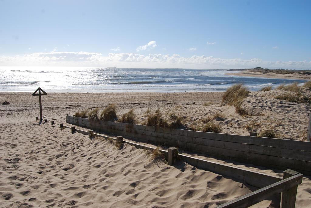 Sandy Invasion by mr-macd