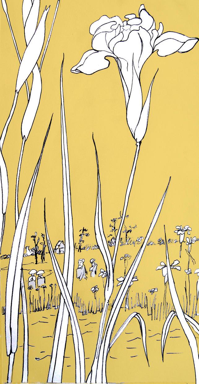 Iris garden at Horikiri Colour 2 by mr-macd