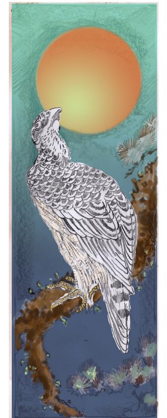 Falcon and Dawn Sun Colour by mr-macd