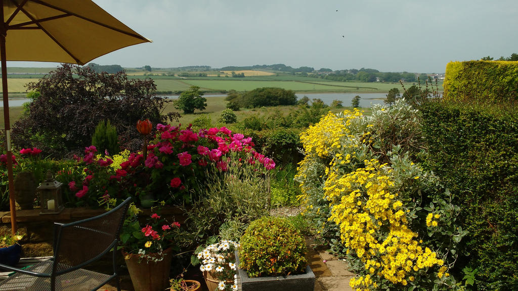 View from my Terrace today by mr-macd