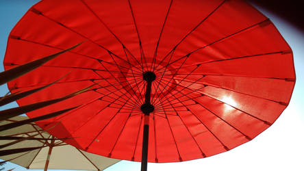 Under my Parasol on the Terrace today[1]