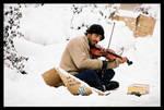 fiddler on snow