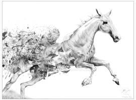 The Fragmentary Horse [2015.11.16] [border]
