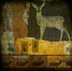 The Animal World no.243