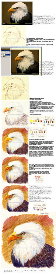 Soluble Color Pencil Tutorial