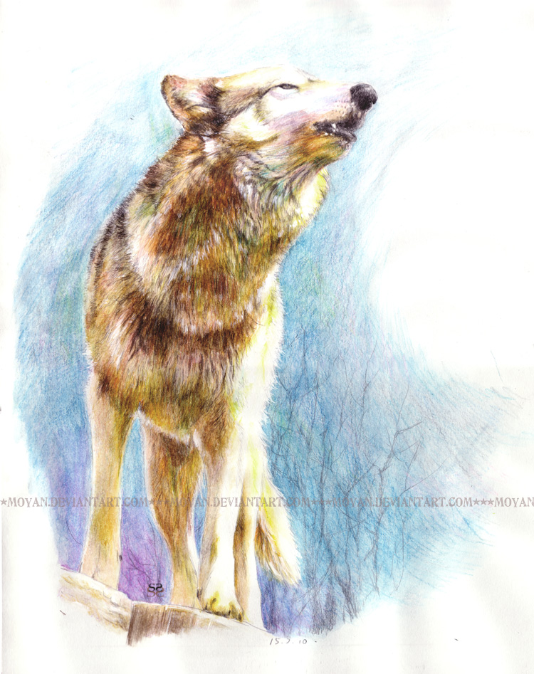 Howling by moyan