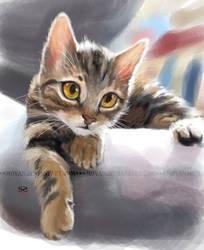 speedpaint-cat