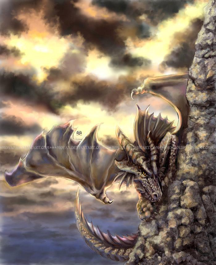 Dragon at Dawn by moyan