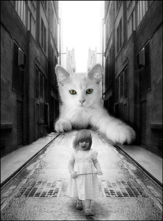 Little kitten.. 2 by cymetic
