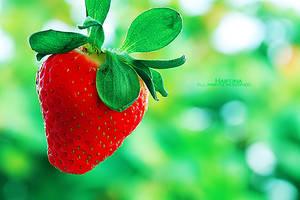 StrawberryIII by Haifona