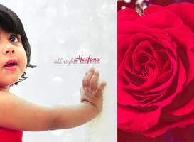 Hopeful by Haifona
