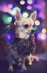 Feliz Navidad!!! by sanchiesp