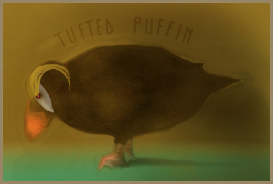 Tufted puffin by alteredteddybear
