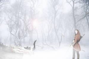 Winter Wonderland with Dragon by heikehk