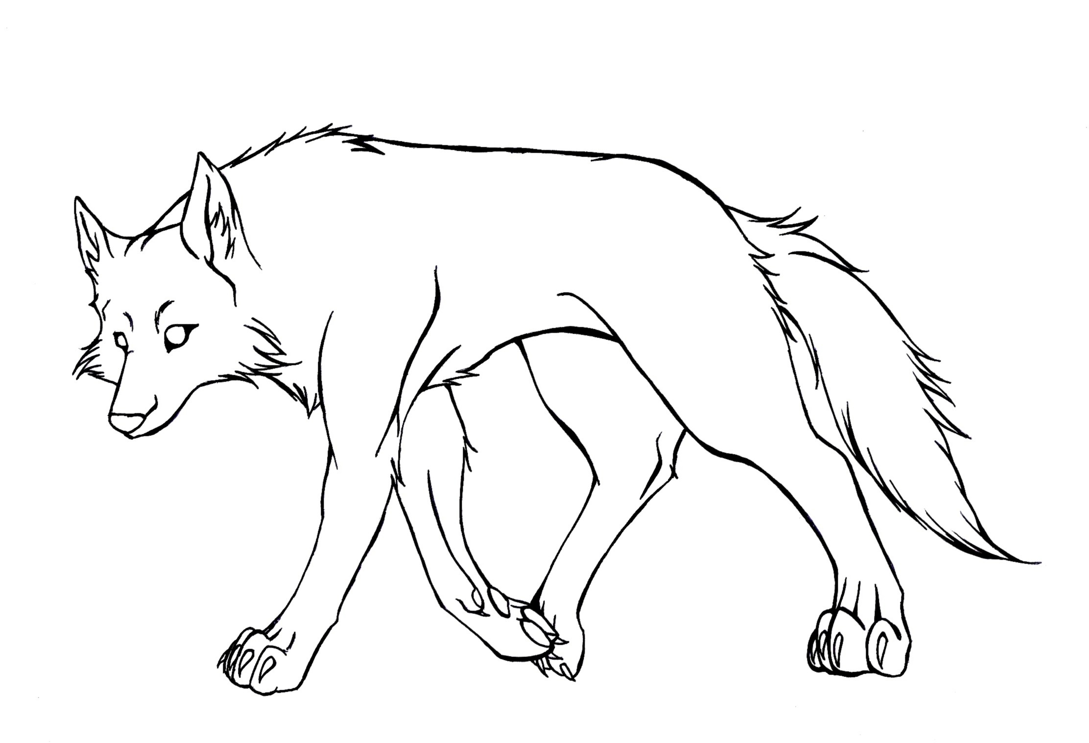 Simple Wolf Lineart : Easy cartoon wolf drawings newhairstylesformen