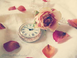 Time flies.... by MrsMichaelis