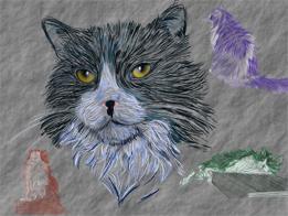 Sassy my cat by Neinas-World