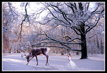 Covered In Wonderland by Tolandiel-Roquen