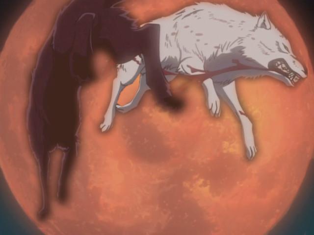 cheap wolf's rain wallpaper by impish-midna