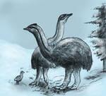 Ice age birds