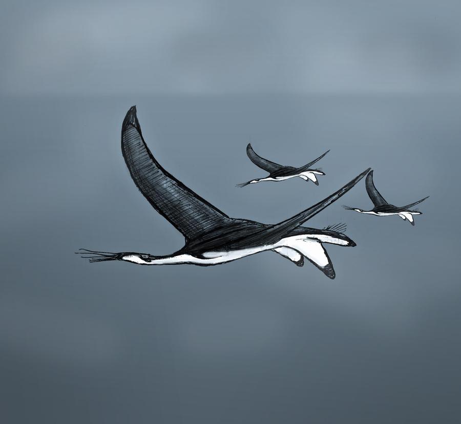 Pneumoflyer by Hyrotrioskjan