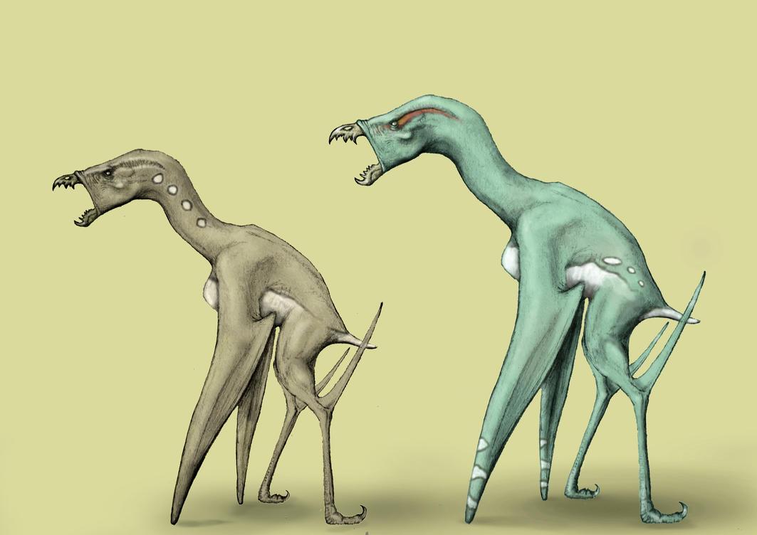 Rakjantar female and male by Hyrotrioskjan