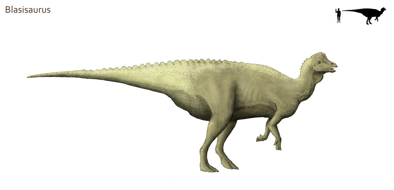 Blasisaurus