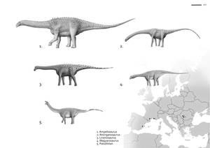 Island sauropods
