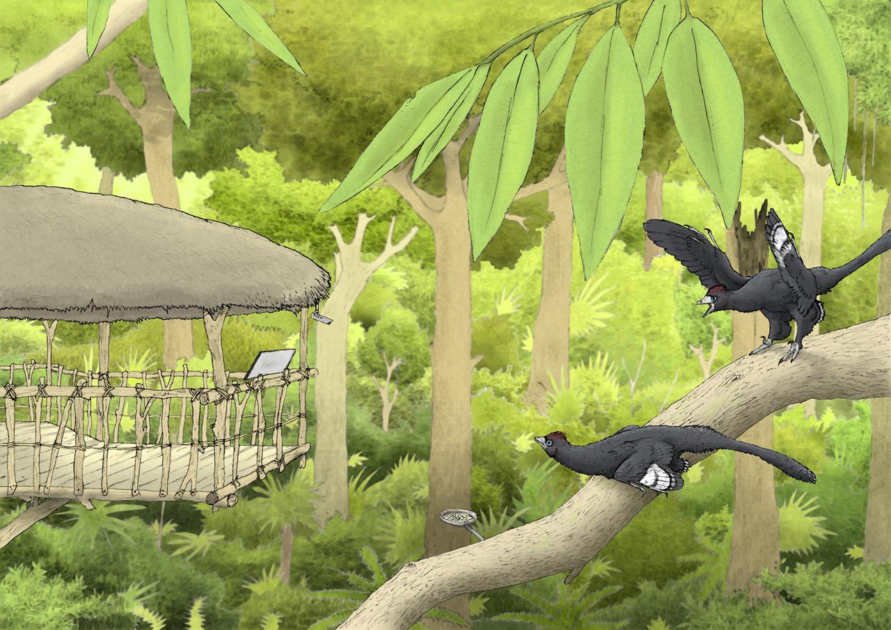 Anchiornis forest by Hyrotrioskjan