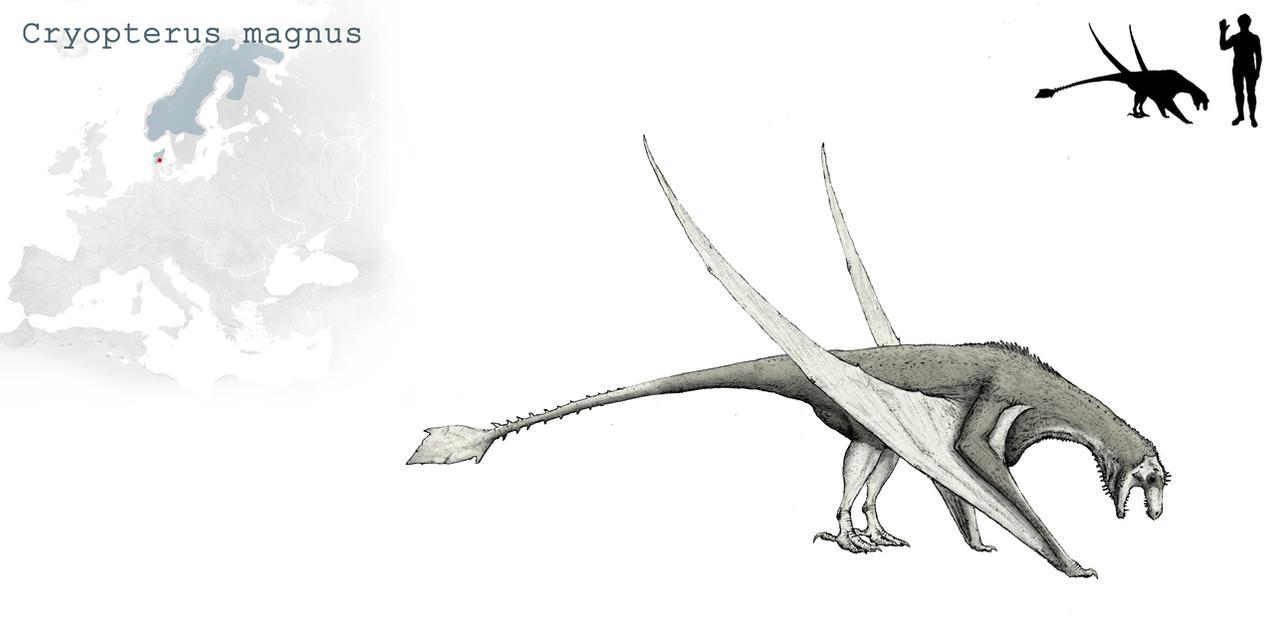 Cryopterus