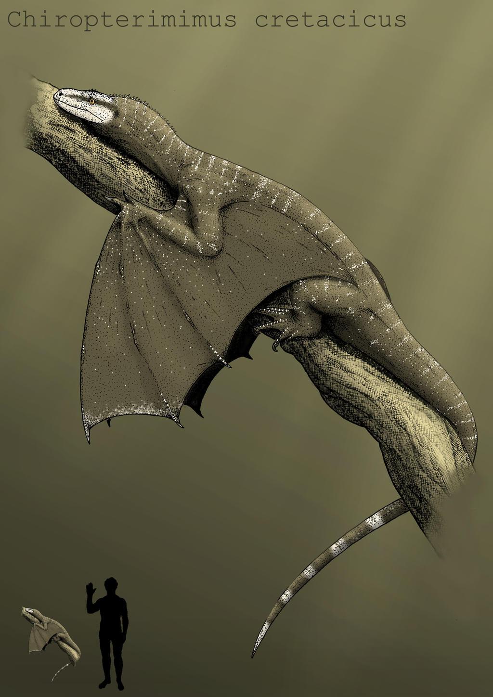 Chiropterimimus by Hyrotrioskjan