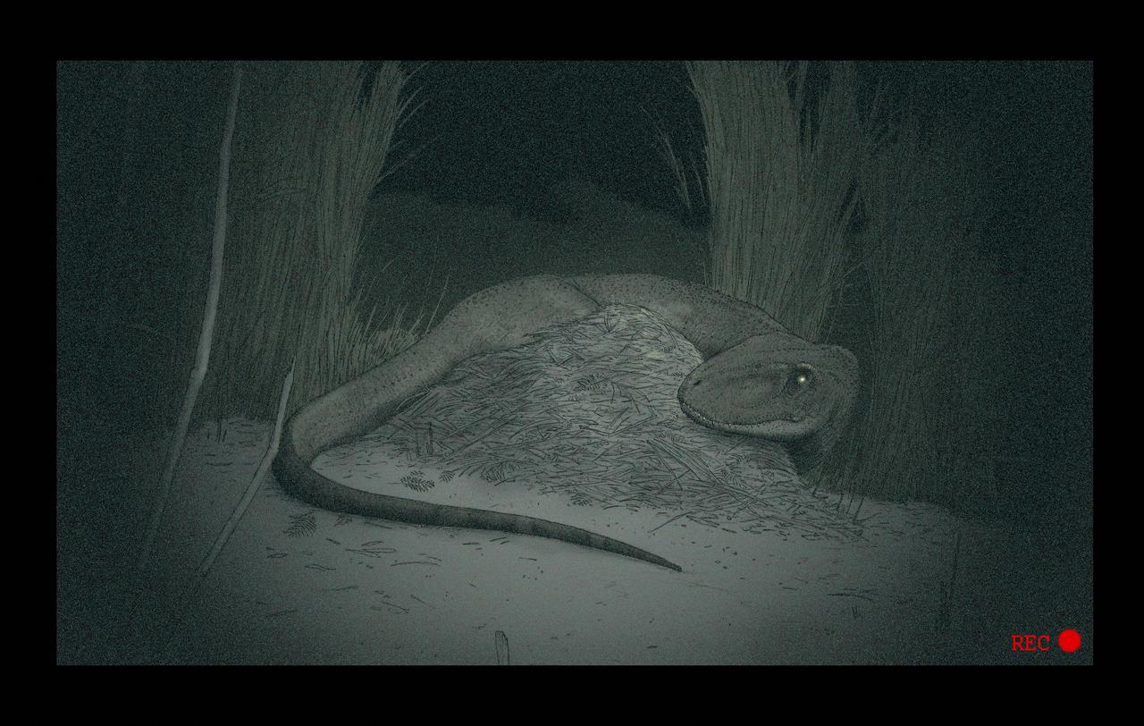 Aucasaurus breeding cam