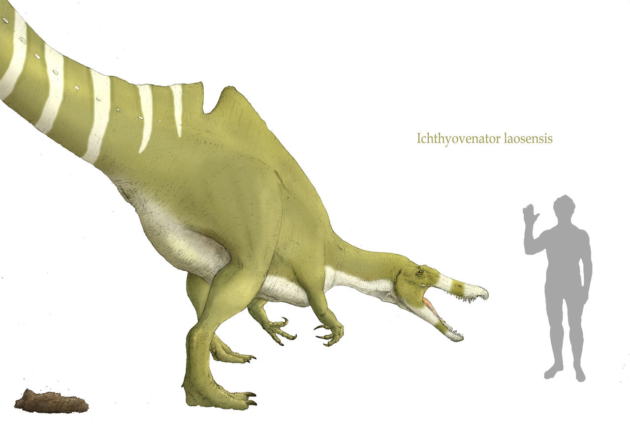 Ichthyovenator and the call of nature