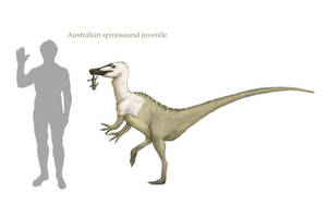 Aussie spinosaurid by Hyrotrioskjan