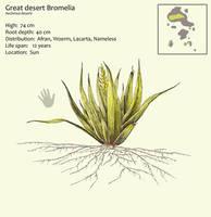Great desert Bromelia by Hyrotrioskjan