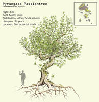 Pyrungata Passiontree by Hyrotrioskjan