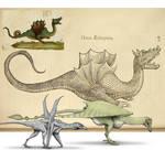 Dragons of Ulisse Aldrovandi
